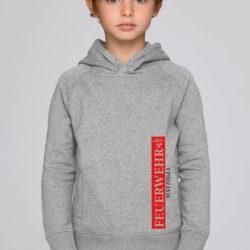 Hoodie Proud Member grey